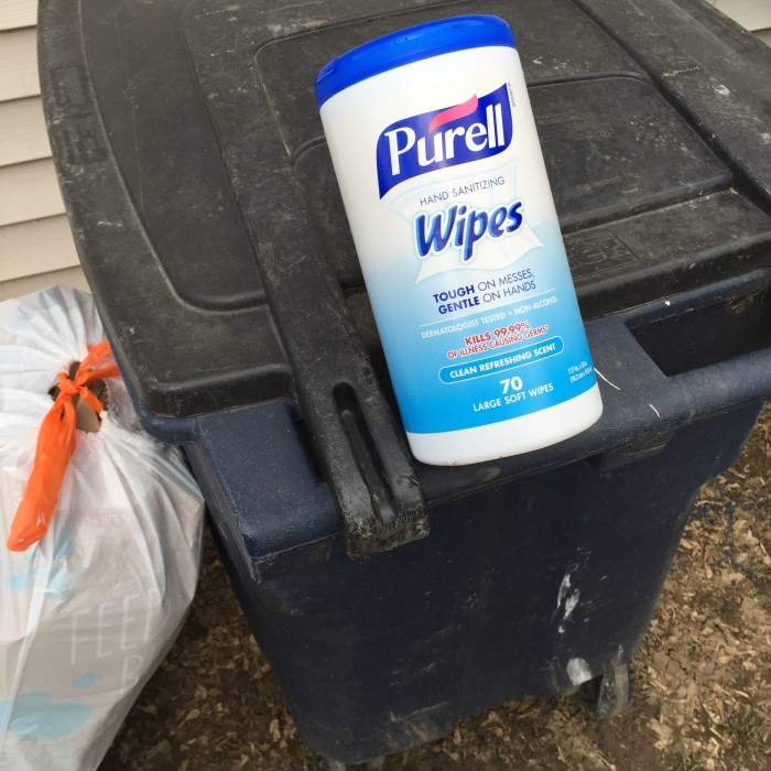 Spring Clean With Purell® © www.roastedbeanz.com #PurellWipes #ad #collectivebias #shop