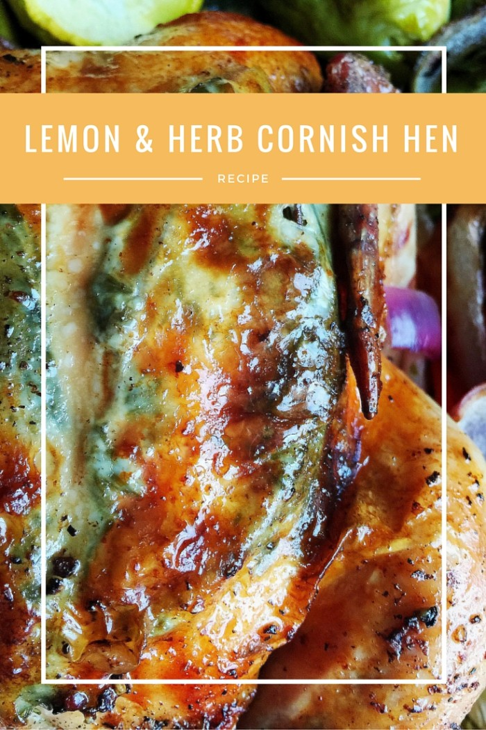 AD: Comforting Resolutions to Warm Up Winter This New Year With Cornish Hens © www.roastedbeanz.com #CornishHenHolidays #ad #CollectiveBias #shop